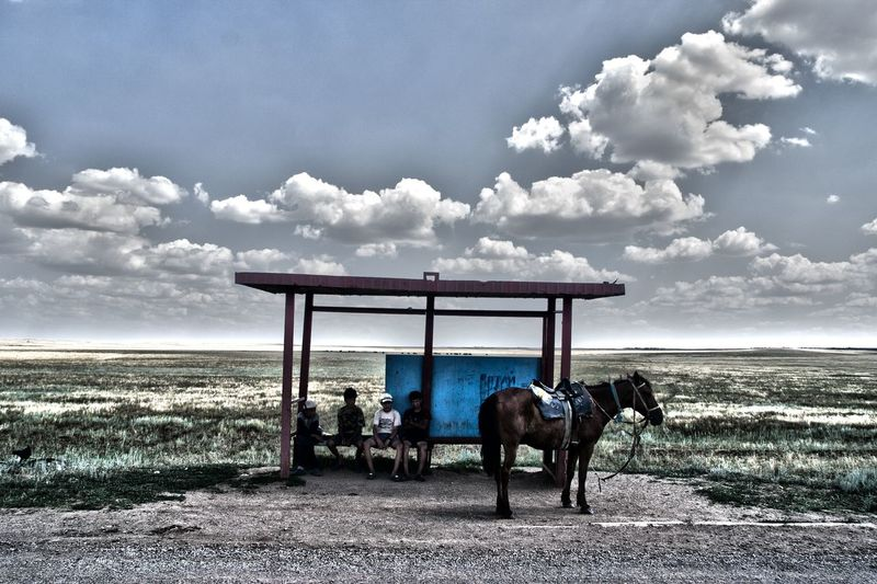 People On Bus Stop With Horse Against Sky