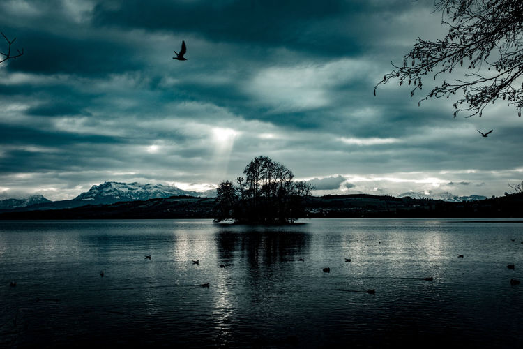 Birds flying over lake against cloudy sky