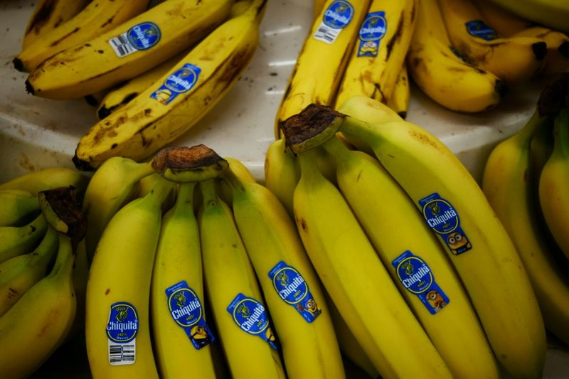 Fresh Produce Large Group Of Objects Produce Grocer Shopping Grocery Grocerystore Yellow Bananas