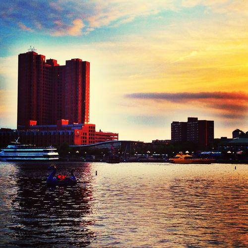 Harbor Water Sunset Enjoying Life