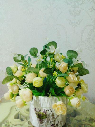 Floweroftheday