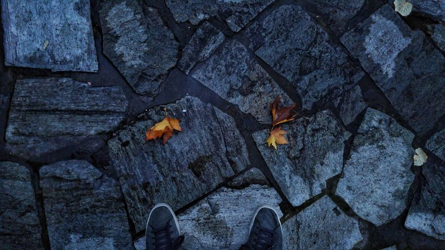 Shoes by leaves on footpath