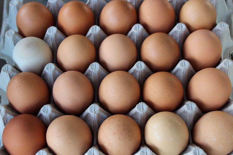 Breakfast Farm Market Produce Market Arrangement Carton Egg Egg Carton Eggs Eggshell Farmer's Market Food Food And Drink Fragility Freshness Healthy Eating Healthy Food Healthy Lifestyle Large Group Of Objects Market Stall No People Produce Wellbeing