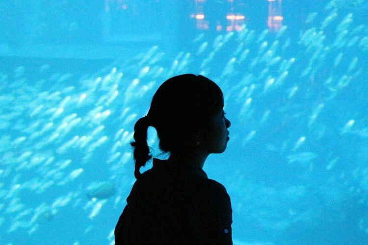 Girl Standing Against Fishes At Aquarium