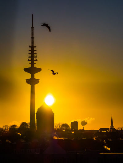 Silhouette bird flying in city against sky during sunset