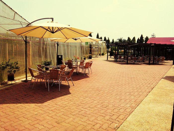 Umbrella Resort