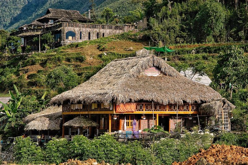 Vietnam SaPa Architecture Plant Built Structure Day No People Building Sunlight Building Exterior Nature Growth Outdoors Green Color Tree Roof Land Shadow House Text Park Ivy