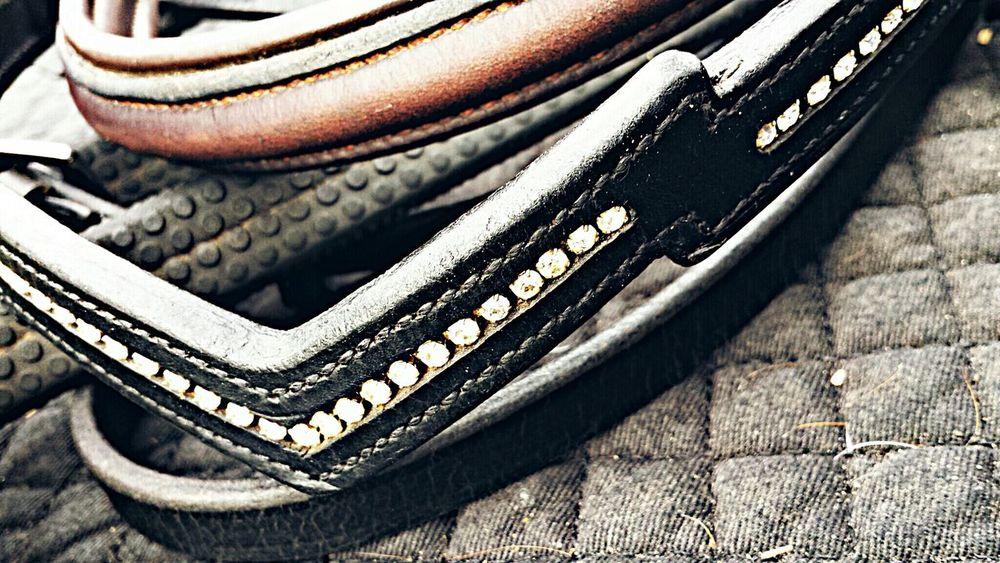 Browbands Tack Equine Macro
