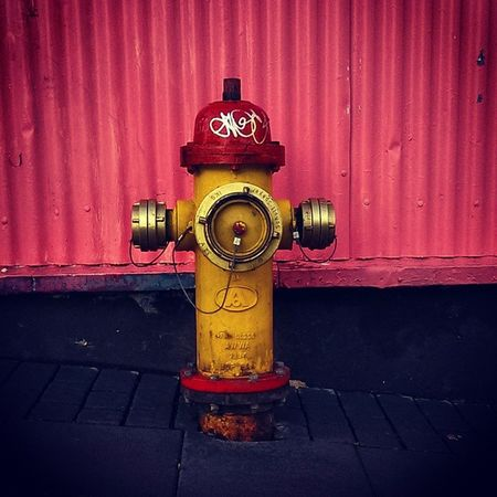 Iceland Reykjavik Visiticeland Discovericeland Water Hydrant Fire Red Yellow Pink Cool Street Art Instacool Like Travel Tourist