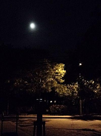 """小伙伴们注意啦!年度最大最圆""""超级月亮""""将在今天晚上至明天凌晨上演。明天凌晨1时43分,月球运行到近地点,距离地球仅35.6896万公里,看起来全年最大!"""