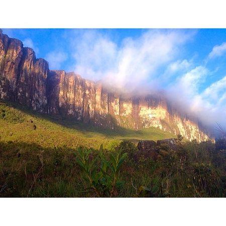 There is still so much to see, keep your eyes wide open 🌾🍃🌳 • • • • • Location: Roraima Tepuy, Venezuela Date: July 2014 Roraimatepuy Roraima2014 Venezuela Tepuy freepeople gransabana venezuelansite trekking @venezuelansite @natgeo