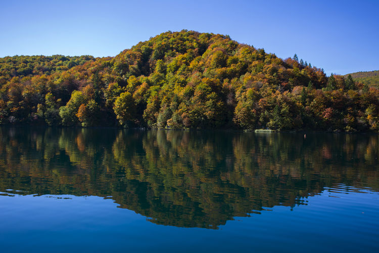 Plitvice lakes, national park in Croatia, autumn landscape Water Colors Hiking Travel Destinations Europe Croatia Nature Plitvice National Park Park Outdoors Explore Hiking Water Reflection Tree Plant Lake Beauty In Nature Tranquility Autumn Scenics - Nature Tranquil Scene No People Sky Nature Day Non-urban Scene Outdoors Forest Idyllic Pine Tree