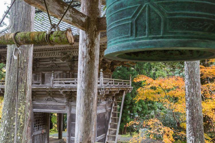 明通寺 福井県小浜市 Fukui Prefecture Obama City Temple Autumn Japan Japan Photography