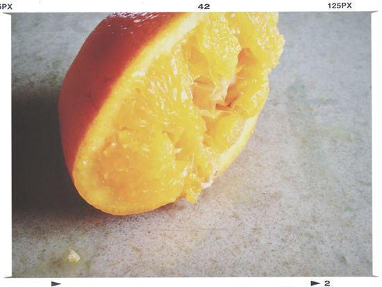Breakfast Series: Decimated Orange Taking Photos