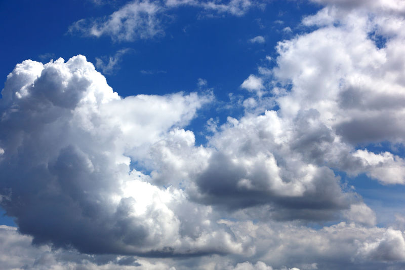 clouds in the sky, rain clouds, low pressure area Dark Clouds Backgrounds Beauty In Nature Blue Clean Cloud - Sky Cloudscape Day Environment Fluffy Low Angle View Low Pressure Area Meteorology Moody Sky Nature No People Outdoors Overcast Rain Clouds Scenics - Nature Sky Sunlight Tranquility White Color Wind