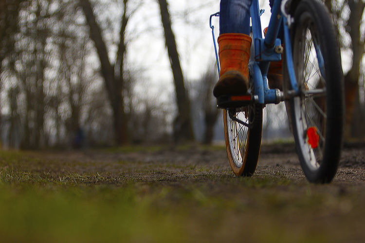 Blue Bycicle Draußen Fahrrad Bysicle Childhood Day Fahrradfahren Lifestyle Photography Magazine Orange Color Outdoor Photography Outdoors Sport Sykkel Tag Ute Valley Park
