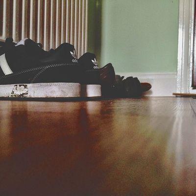Footwear Vscocam IPSContest Love Tweegram instagood photooftheday iphonesia instamood igers instagramhub picoftheday instadaily bestoftheday igdaily instagramers webstagram follow statigram life adidas trainers shoes