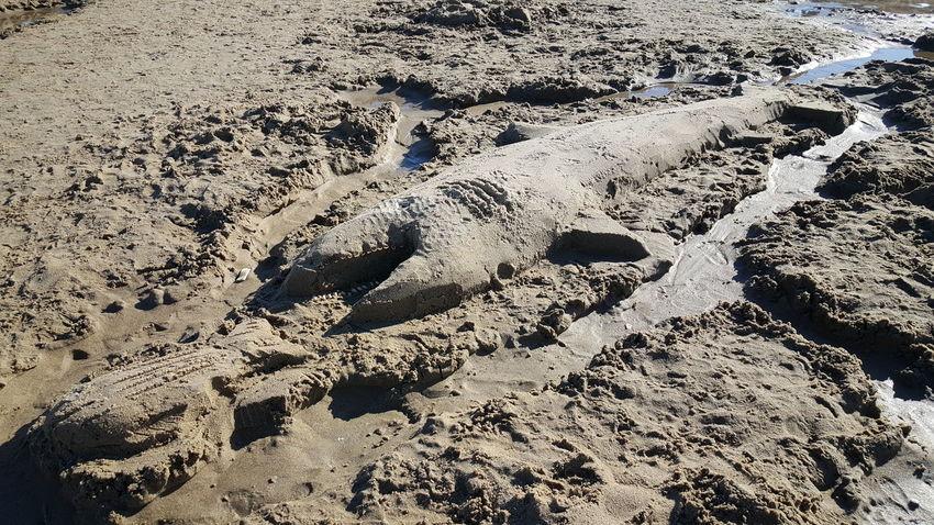 Sand Sculpture Beach Photography Opme⛱ EyeEm Best Shots Maine Photography 🌲 S6