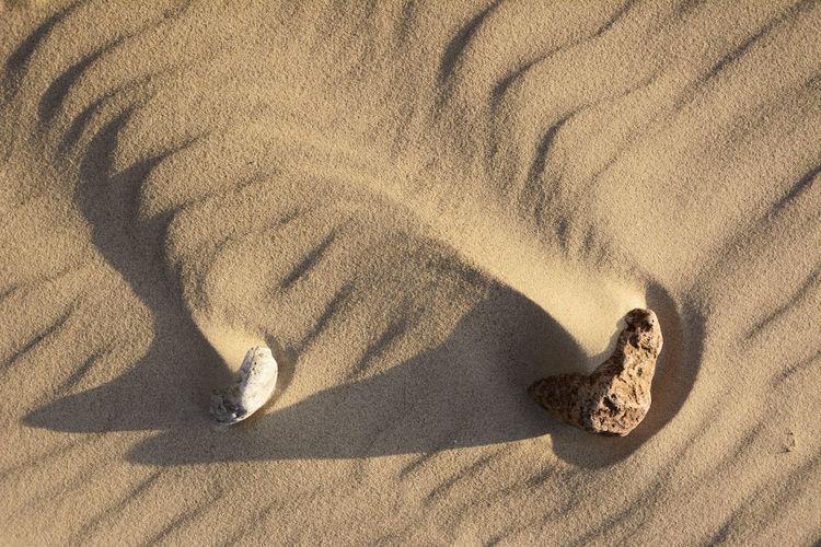 High angle view of small shadow on sand