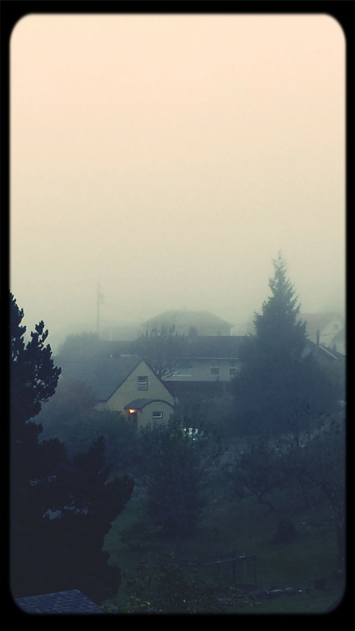tree, architecture, fog, no people, built structure, outdoors, nature, building exterior, day, mountain, beauty in nature, sky, city