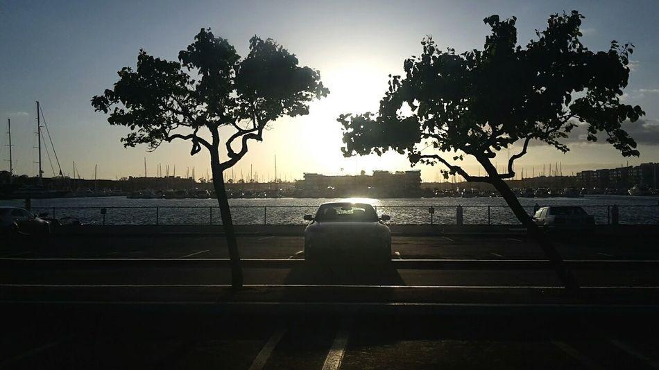 Sun La Cars Silhouette California