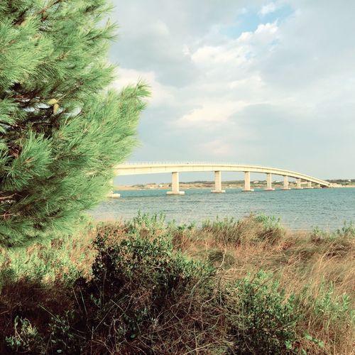 Connection Bridge - Man Made Structure Built Structure Architecture Transportation Engineering Water Bridge Travel Kroatien Hrvatska Croatia Vir