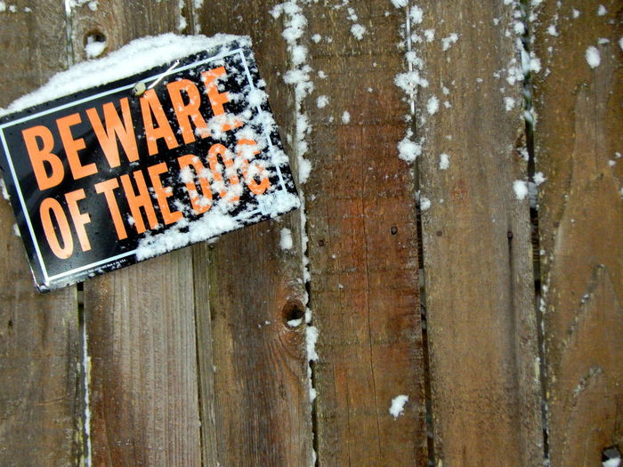 beware of the dog Beware Close-up Colors Communication Day Dog Fence Naighbourhood No People Orange Outdoors Post Sign Signs Snow Snow ❄ Text Urban Washington State Wood The City Light