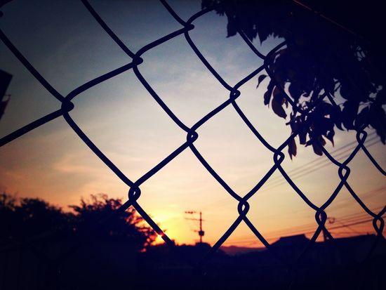 今日の西側 The Sunset Sunset