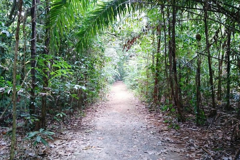 Cycling in Pulauubin . it's the last frontier in Singapore, somebody said. ウビン島でサイクリング。