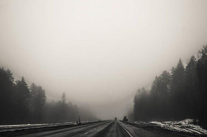 Road Roads Fog Travel Morning Nikon Nikon_photography_ Photo Friday Inmove Trees Blackandwhite Monochrome