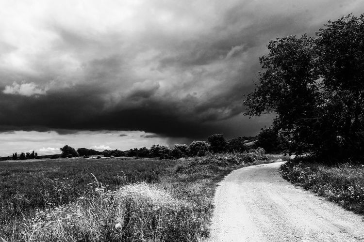 Summer thunderstorm. Cloud - Sky Plant Sky Tree Nature Environment Field Beauty In Nature Landscape Road Land Direction Scenics - Nature Tranquil Scene No People The Way Forward Tranquility Storm Dirt Road Outdoors Summer Thunderstorm Summer Thunderstorm Storm Cloud