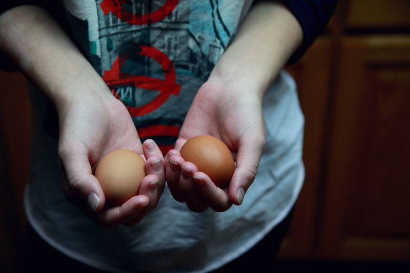 Brown eggs for breakfast. Brown Cooking Egg Family Food Fragile Fragility Fresh Hands Cupped Healthy Eating Holding Kitchen Life One Person People Person Real People Two Retro Colors Film