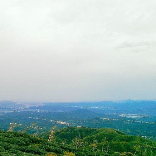 很美很美 ! 小半天 茶 南投 台灣 View Tea Nantou Taiwan Linying