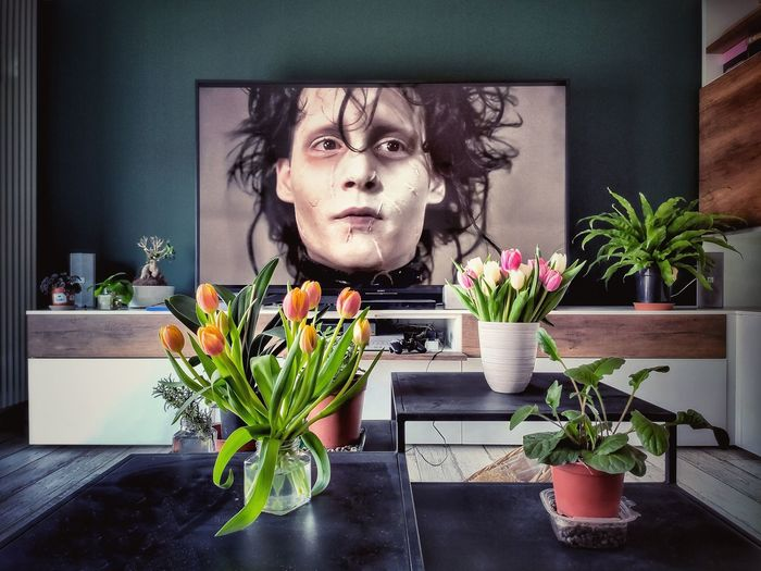 Portrait of young man by potted plant at home