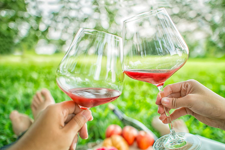 Adult Alcohol Celebratory Toast Couple - Relationship Drink Food And Drink Glass Hand Holding Human Body Part Human Hand Lifestyles Men People Plant Refreshment Togetherness Two People Wine Wineglass Women