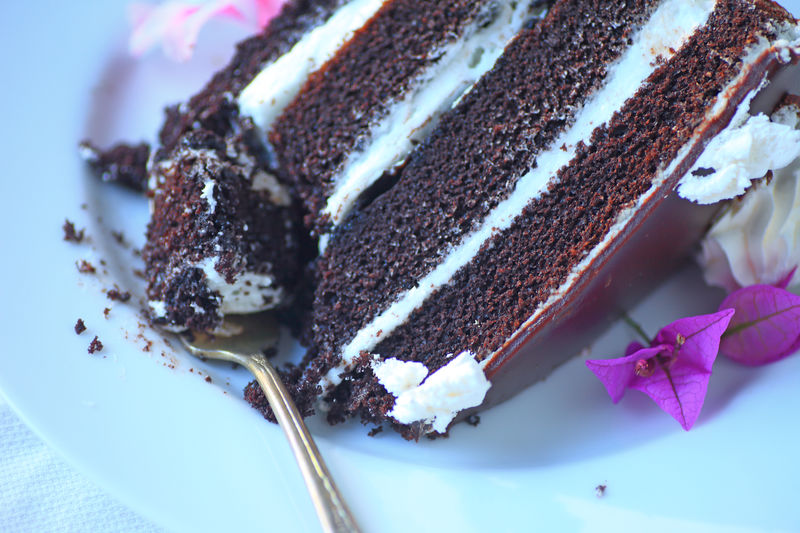 Four-layered chocolate cake slice Caloric Celebration Chocolate Cake Close-up Dark Brown Day Dessert Dish Fork Fresh Flowers Freshness Frosting Indoors  Indulgence Natural Light No People Ready-to-eat Sweet Food Tasty Temptation Textures Unhealthy Food White