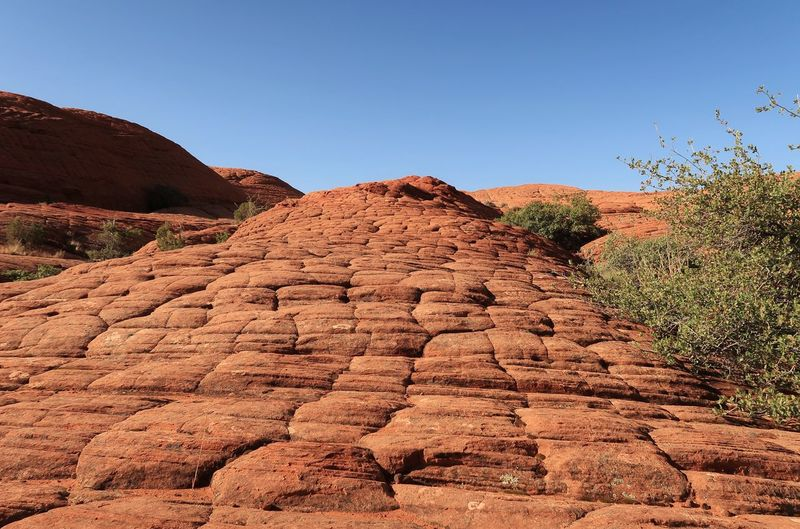 Low angle landscape of sloping orange rock formation in Snow Canyon State Park in Utah Snow Canyon State Park Orange Color Blue Sky Red Rock Utah Scenery Colorful Nature Utah Travel Destinations EyeEm Selects Sky Clear Sky Tranquility Scenics - Nature Nature Tranquil Scene Landscape Beauty In Nature Day Plant No People Environment Blue Rock Non-urban Scene Copy Space Mountain