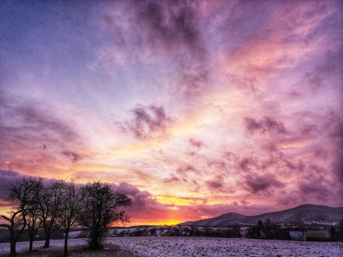 EyeEm Best Shots EyeEm Naturelovers Nature Photography #alsace #photography Cityscape EyeEm Selects EyeEm Best Shots EyeEm Nature Lover Eye4photography  EyeEm Gallery Galaxy Milky Way Sunset Astronomy Mountain Tree Purple Multi Colored Dramatic Sky Sky Romantic Sky