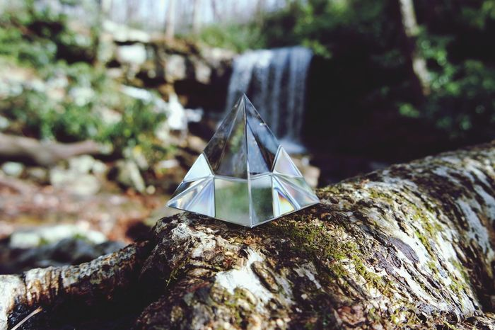Crystal Triangle at Cole Run Falls No People Nature Close-up Day Tree Stump Outdoors Fragility