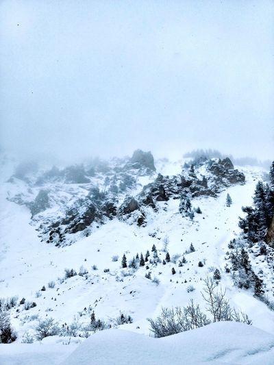 Snow Nature Mountain