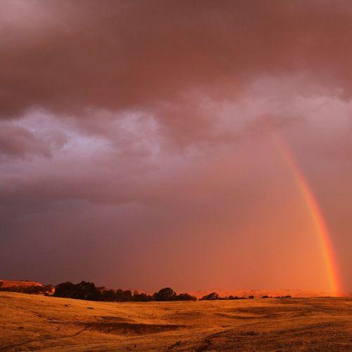 Stormy Sky! Nenaghpastoral Mansfieldmtbuller Rainbow Sky Storm