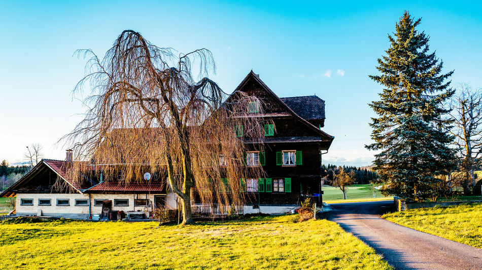 Agriculture Architecture Blue Building Exterior Built Structure Clear Sky Day Field Gormund Grass Green Color Growth House Kapelle Nature No People Outdoors Rural Scene Sky Sunlight Transportation Tree