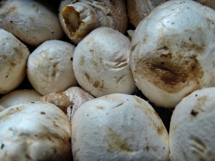 Mushrooms close-up. Mushroom Mushrooms Food Food And Drink Freshness Full Frame Backgrounds Wellbeing Large Group Of Objects Healthy Eating Still Life Close-up Vegetable For Sale No People Raw Food Market Abundance Market Stall Retail  Indoors  Cooking Fresh