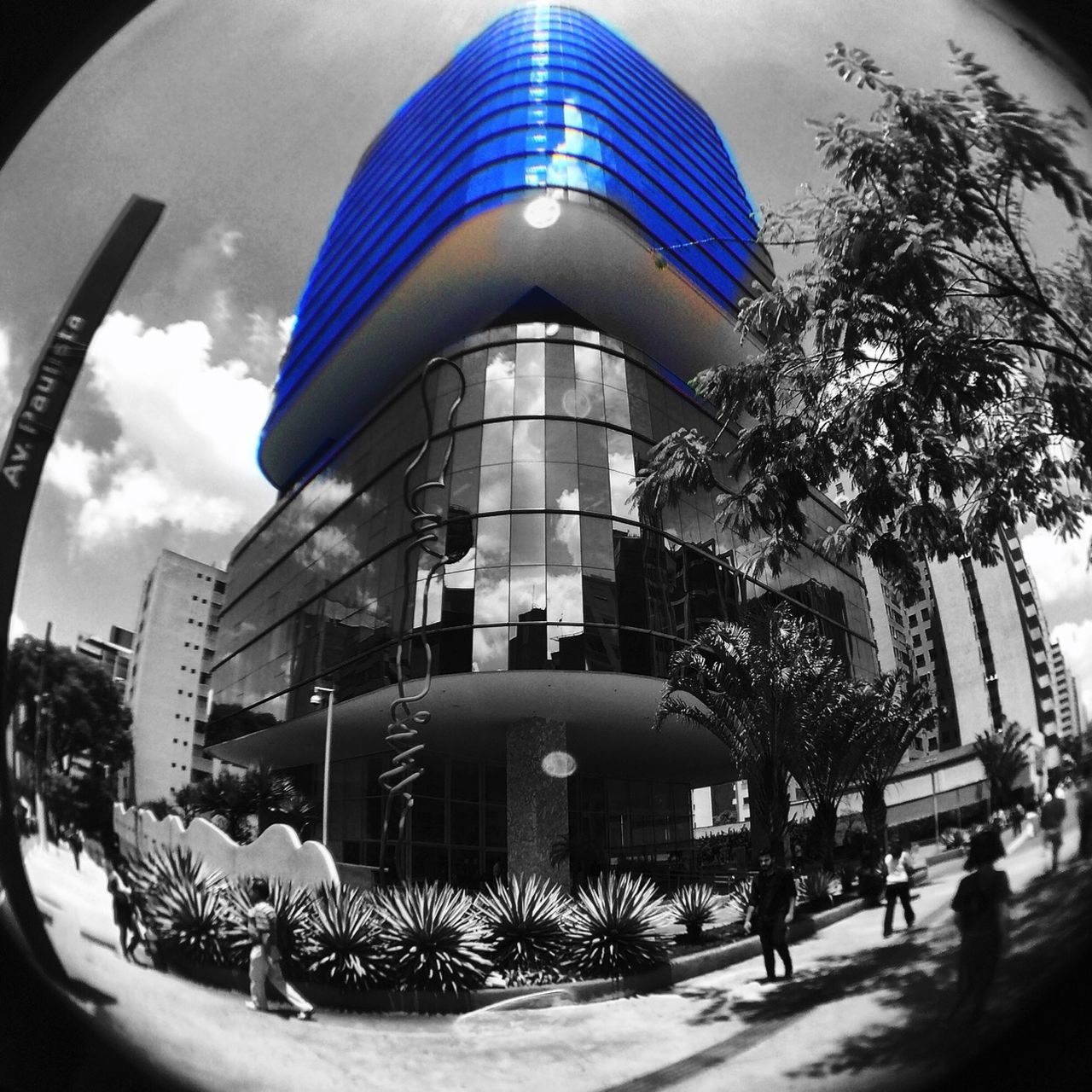 architecture, building exterior, built structure, tree, sky, fish-eye lens, plant, outdoors, day, palm tree, city, modern, no people