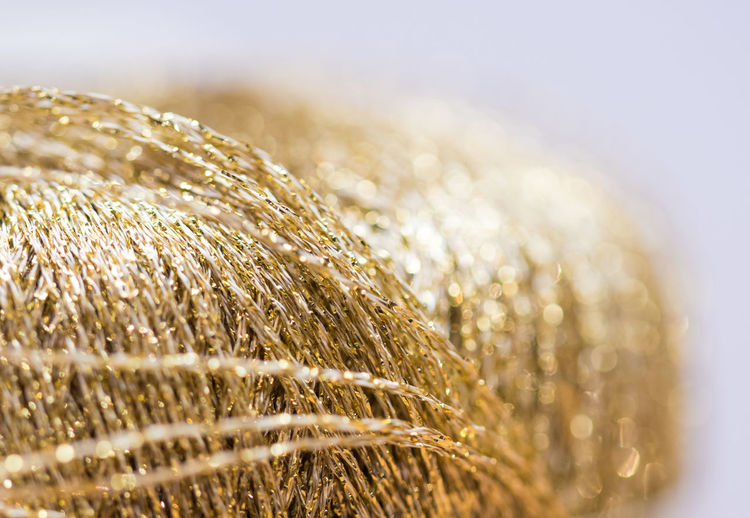 Selective Focus Close-up Cereal Plant No People Crop  Agriculture Nature Plant Gold Colored Day Wheat Sunlight Summer Extreme Close-up Outdoors Growth Grass Landscape Focus On Foreground