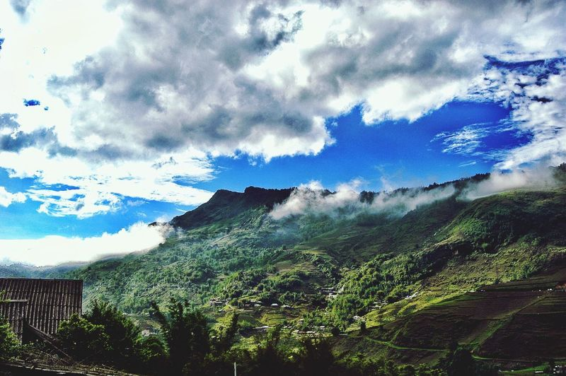 Vietnam SaPa Cloud - Sky Sky Plant Tree Nature Day No People Tranquility Beauty In Nature Architecture Tranquil Scene Low Angle View Building Exterior Built Structure Mountain Scenics - Nature Growth Outdoors Blue Building
