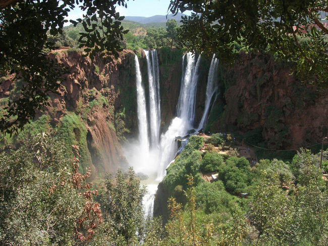 waterfall ouzoud in morocco Morocco Ozoud Waterfalls And Calming Views  Beauty In Nature Blurred Motion Day Forest Motion Nature No People Outdoors Ouzoud Falls Ouzouz Ouzouz Morocco Tourism Travel Tree Water Water Fall Waterfall Waterfall Morocco Waterfall Ouzou Morocco Waterfalls