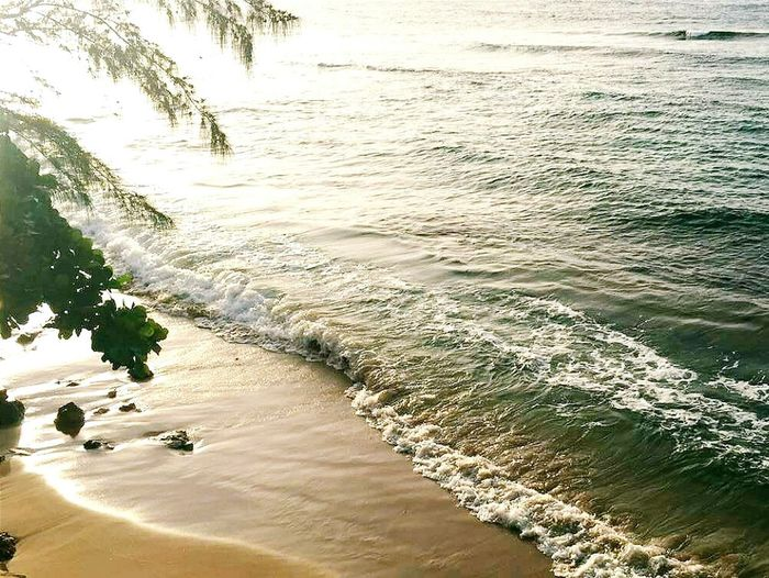 My Favorite Place Water Beach Sea High Angle View Wave Surf Travel Sand Vacations Shore Nature Beauty In Nature Day Tranquility Tranquil Scene Travel Destinations Like4like Like Likeforlike Likes Nature Nature_collection Nature Photography Beauty In Nature