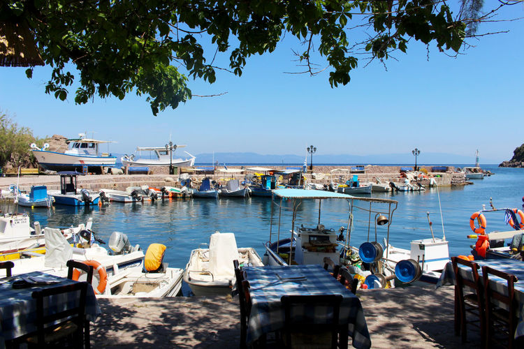 Beautiful Day Blue Boat Day Greece Harbour Horizon Over Water Lesbos Lesvos Portrait Scenics Sea Sunlight Sunny Tablecloth Terrace Tourism Tourist Destination Tranquil Scene Tranquility Travel Destinations Vacations Village Village Life Water