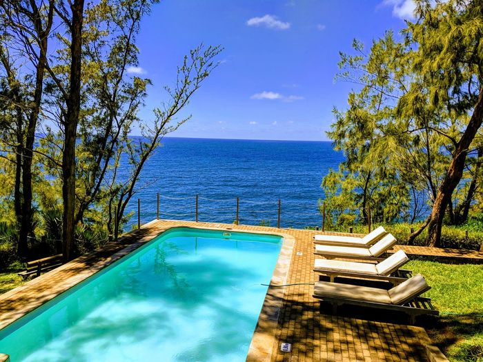 chill Poolside Sea Tree Nature Nature On Your Doorstep Vacations Chilling Filao Tree Blue Sky Blue Wave Water Tree Swimming Pool Sea Blue Luxury Hotel Sky Horizon Over Water